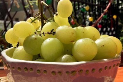 Uva: un'ottima merenda ricca di proprietà!